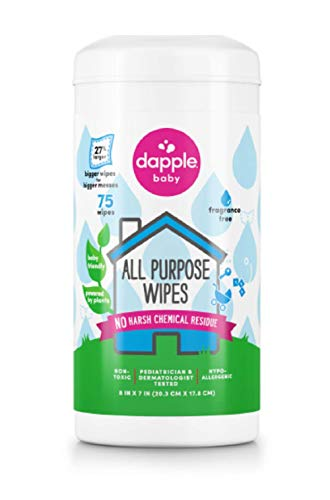 Dapple Toy and Surface Wipes – 75 Ct, Pack of 2